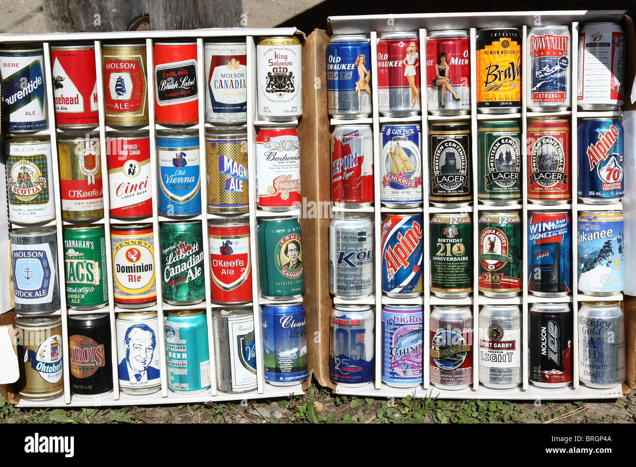 Alamy 31716058 Beer Can Stock Photo Collection -