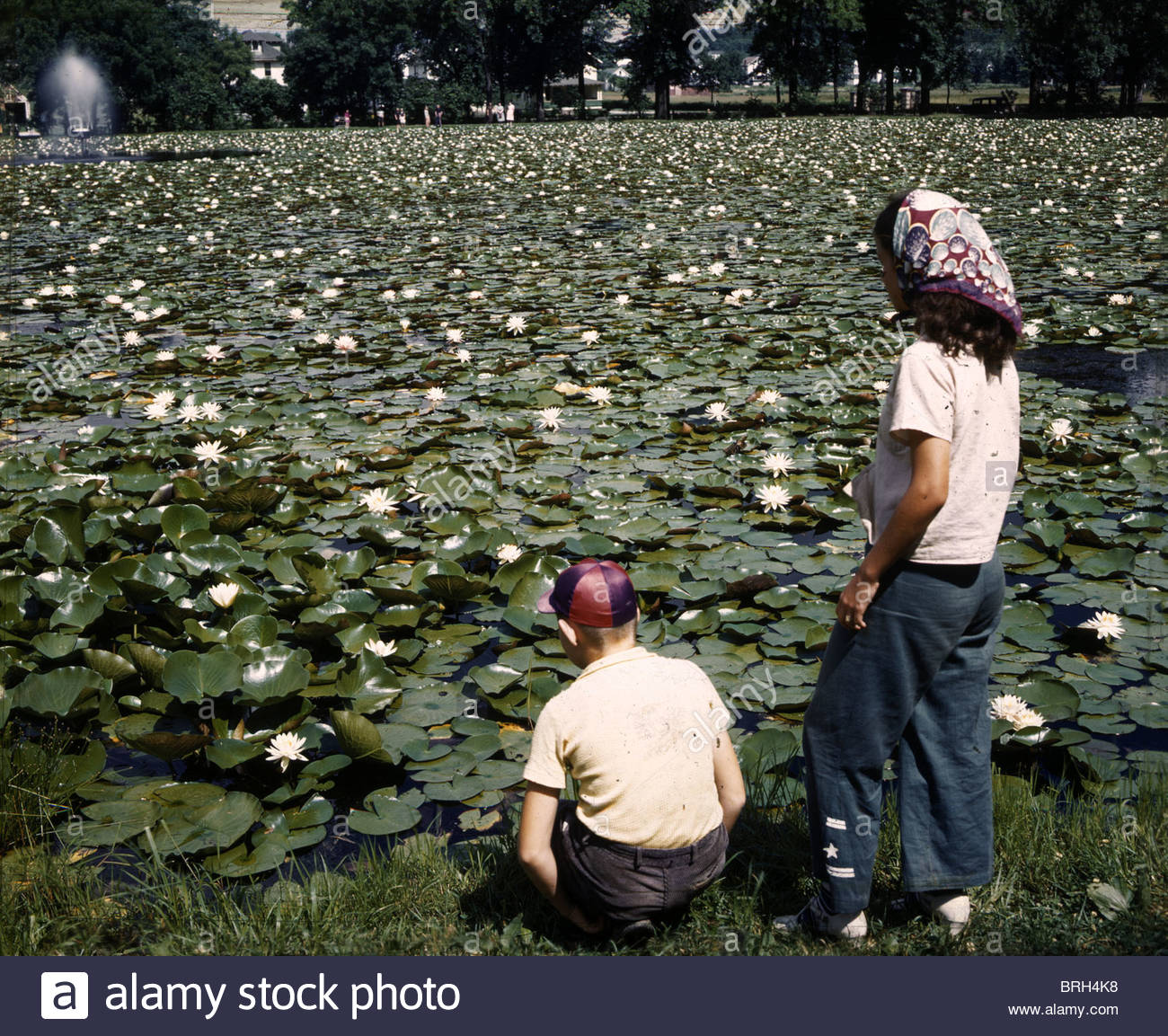 Two people gaze at a lily pond that was once a bicycle track