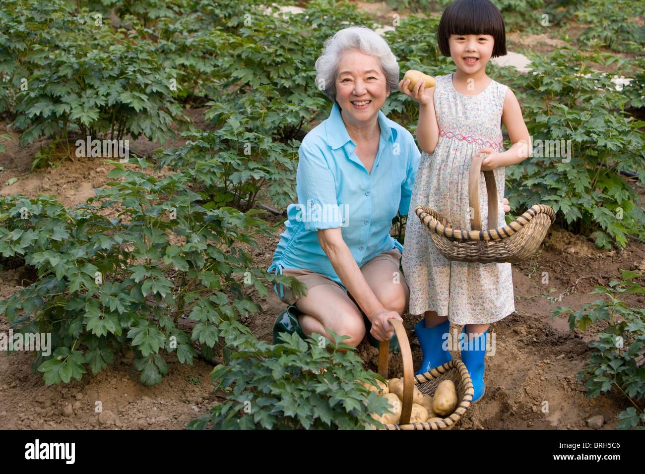 Superior Grandma And Granddaughter Gardening   Stock Image