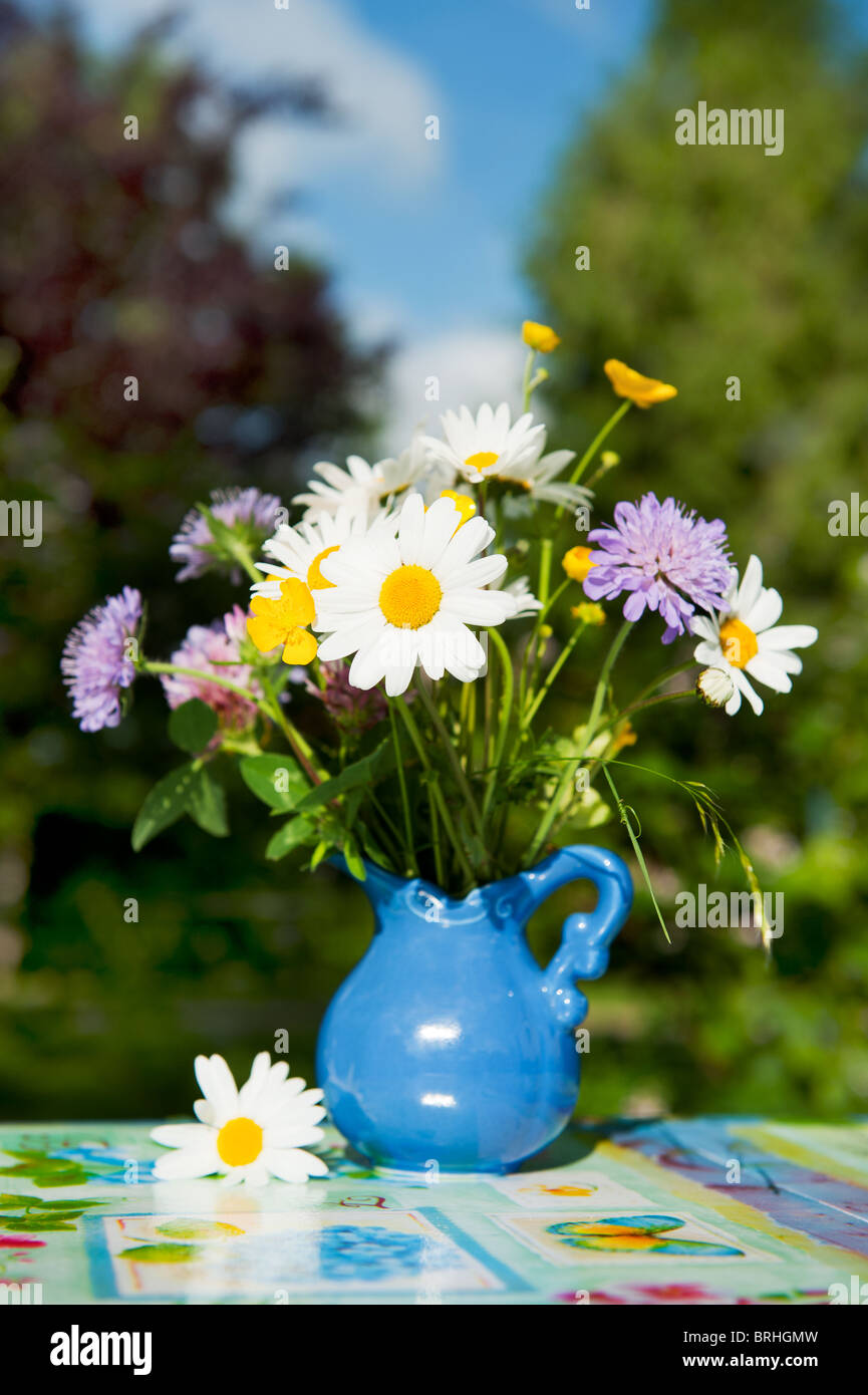 Wild flowers as daisies and clover in blue vase outdoor stock photo wild flowers as daisies and clover in blue vase outdoor izmirmasajfo