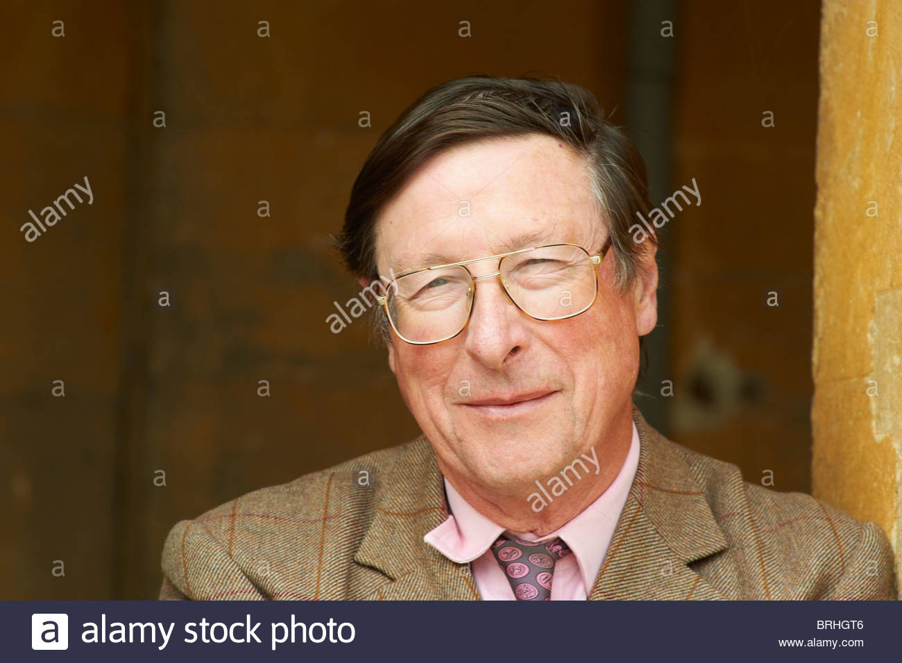 Max Hastings,former War Correspondent and writer - Stock Image