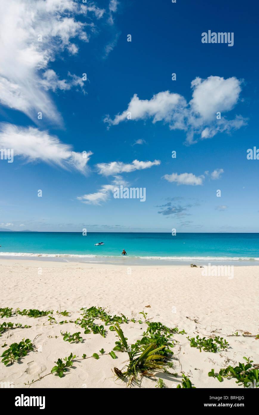 Darkwood Beach, Antigua, West Indies, Caribbean, Central America Stock Photo