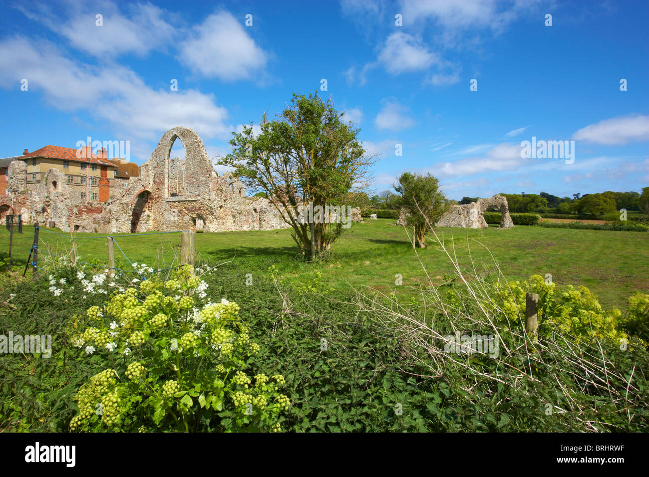 Leiston Abbey in Suffolk - Stock Image