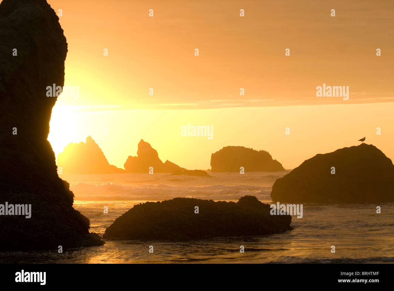 Sea stacks in the Pacific Ocean at Bandon State Park Bandon Oregon - Stock Image