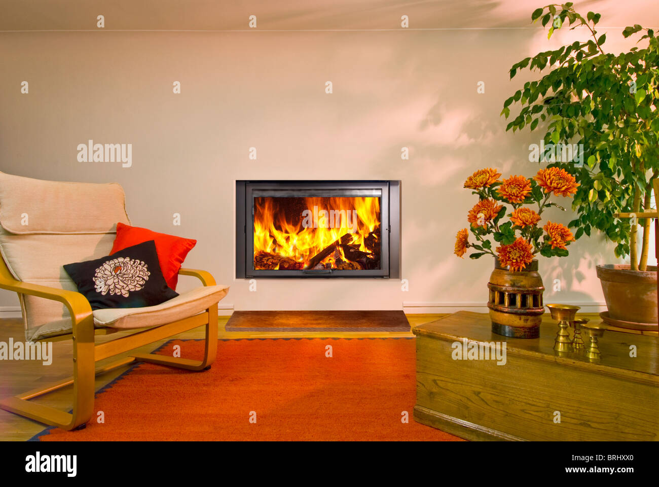 An Aquatherm Eco insert wood burning stove with flames - Stock Image