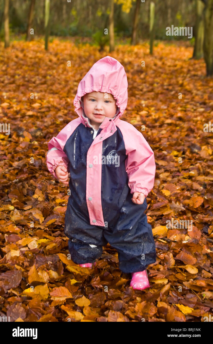 Vertical close up portrait of a little girl dressed in an all in one waterproof toddling through bright orange fallen - Stock Image