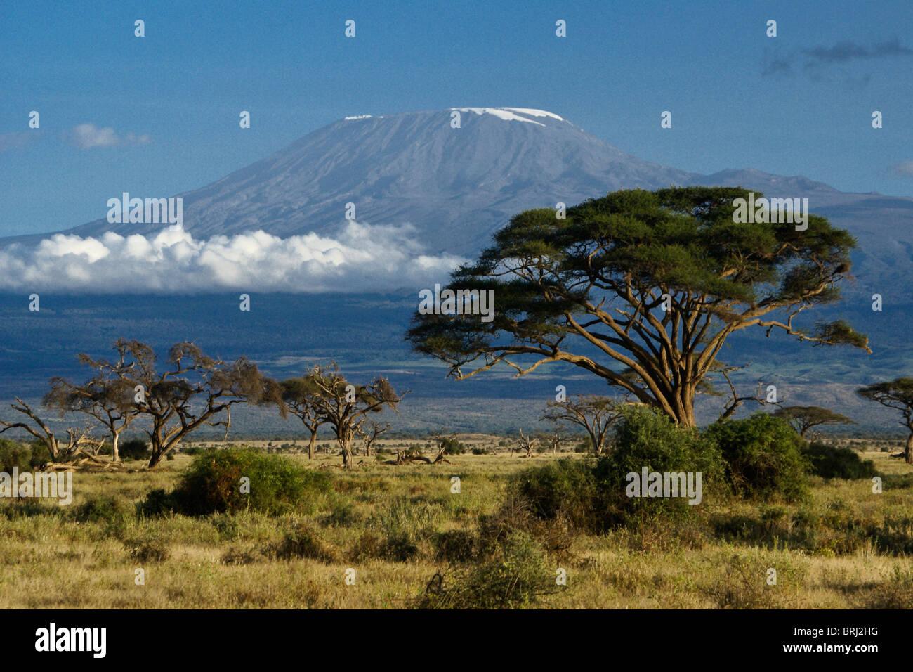 Mount Kilimanjaro, Tanzania, viewed from Amboseli National Park, Kenya - Stock Image
