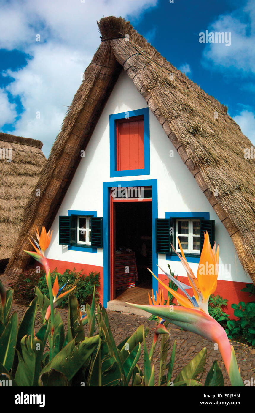traditional thatched Madeiran cottage,house.Santana,Madeira.Portuguese island. - Stock Image