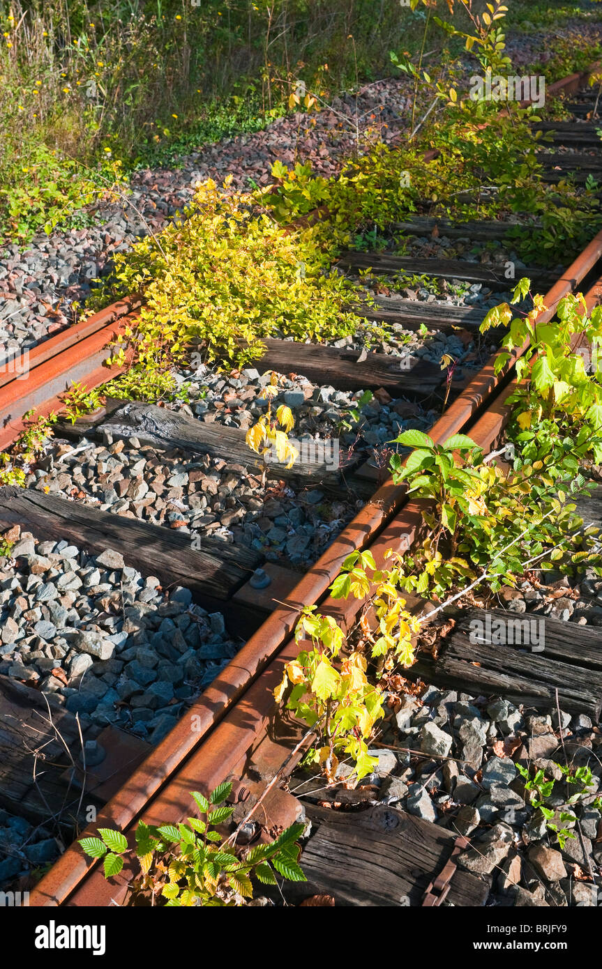 The end of the line / disused railway track - France. Stock Photo