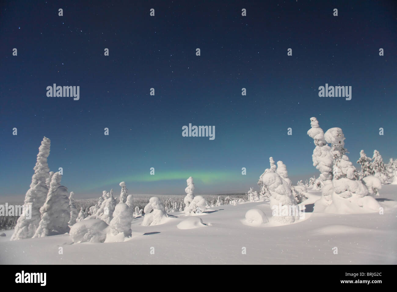 Aurora Borealis over snowy landscape in Riisitunturi National Park at night, Finland Stock Photo