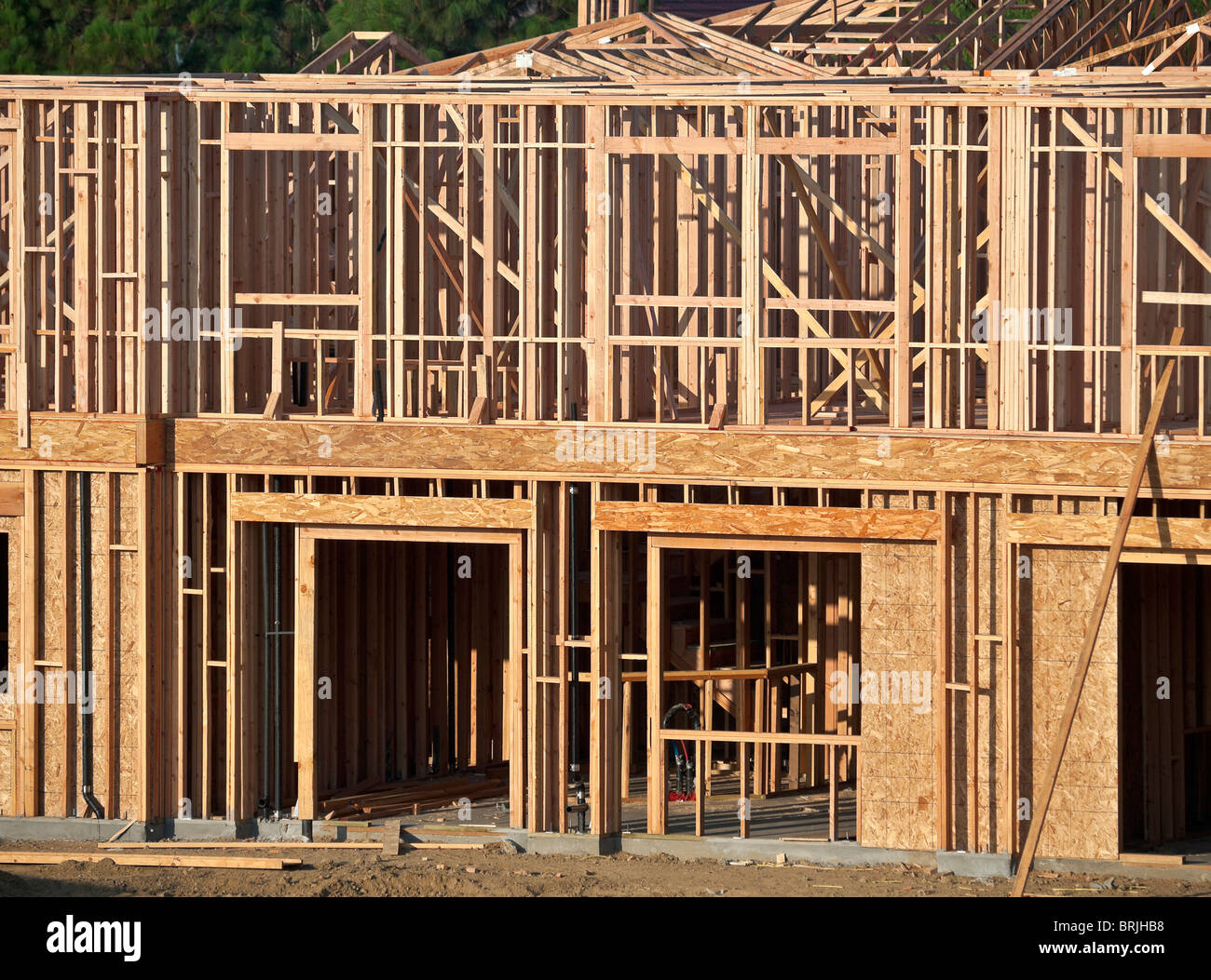 Typical house construction framing in warm early morning light. - Stock Image