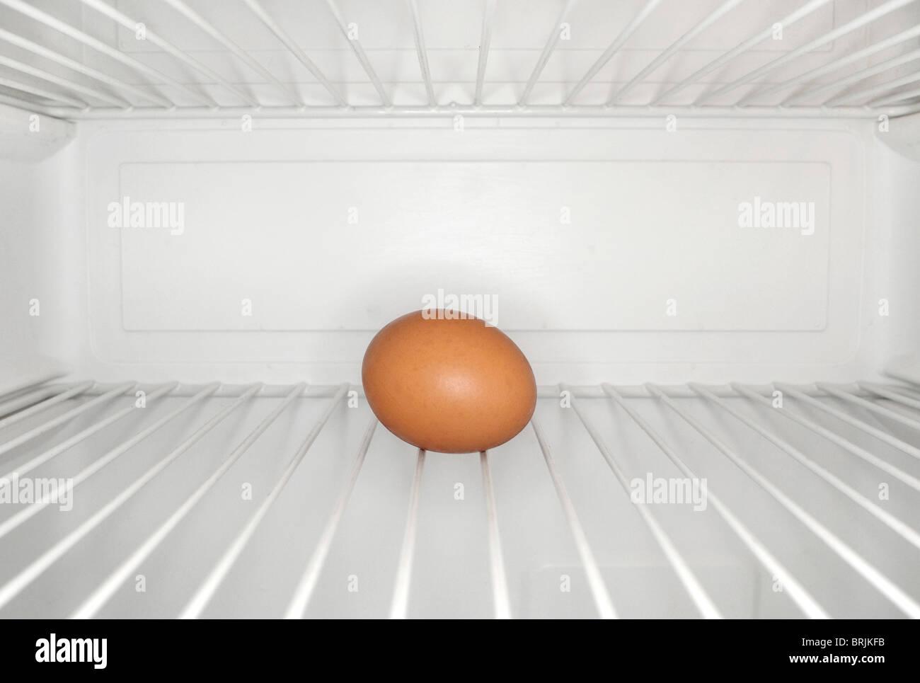 Single egg sitting on shelf inside refrigerator - Stock Image