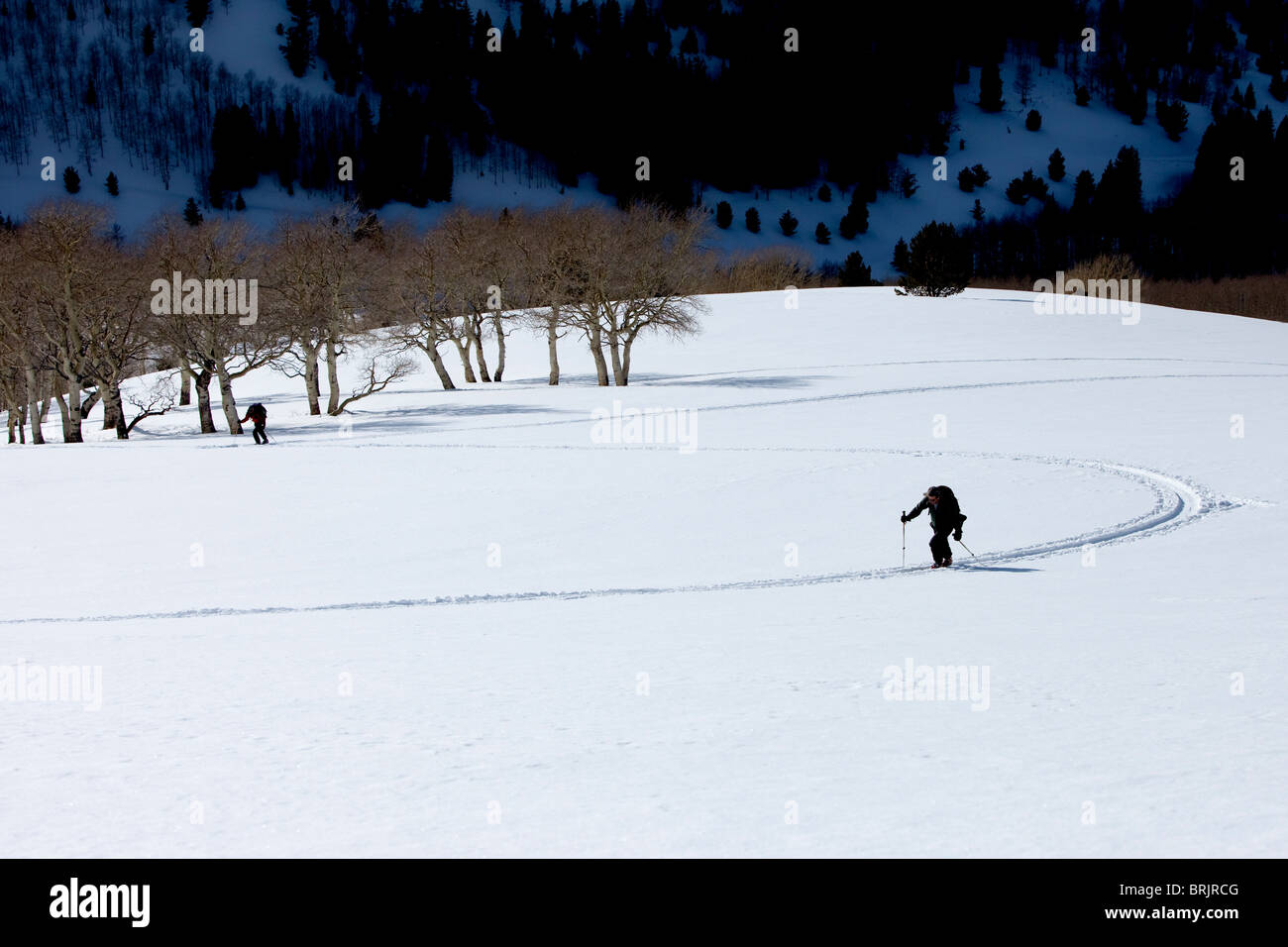 Two men backcountry touring / hiking up hill on clean snow. - Stock Image