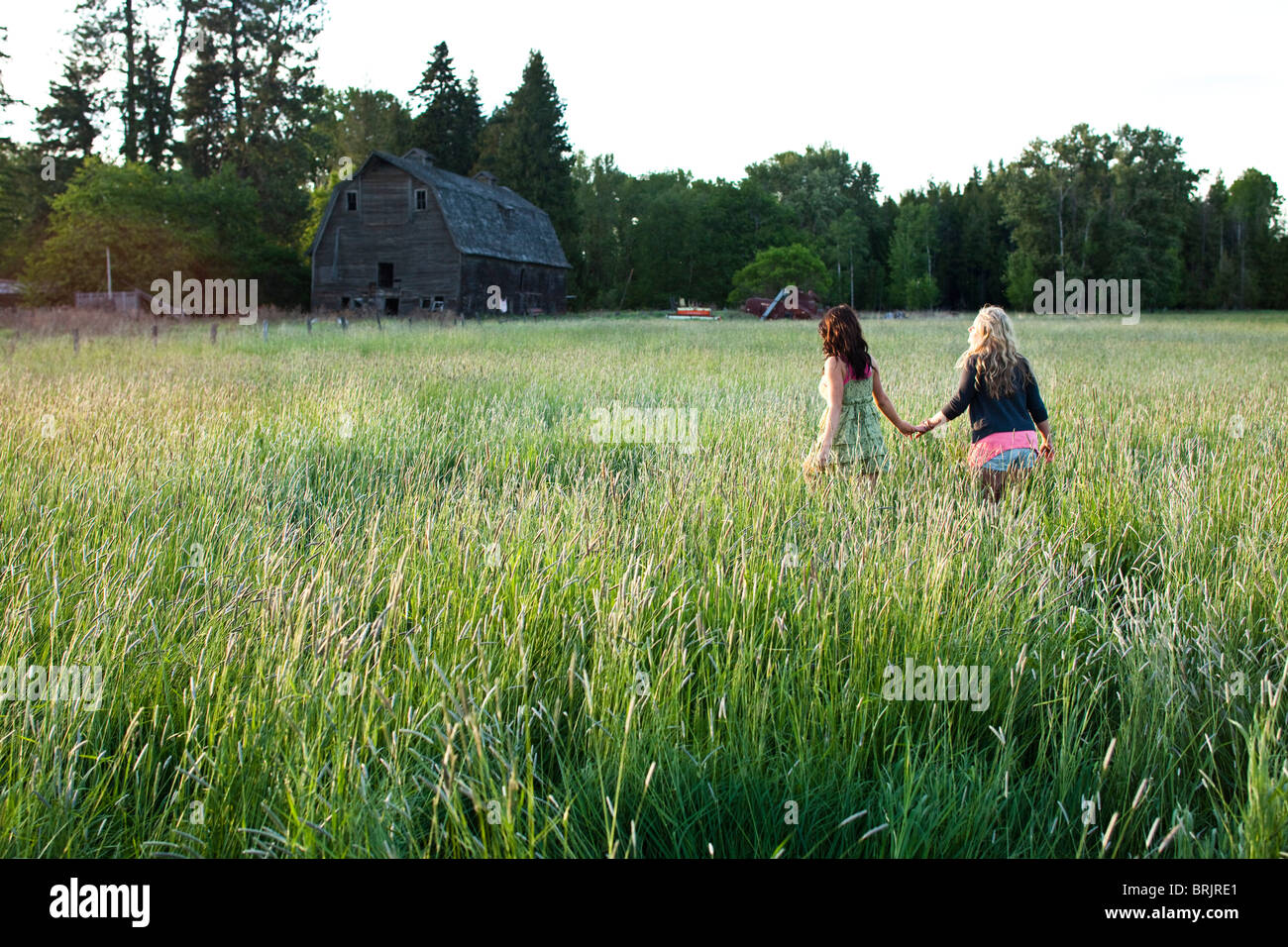 Girls walk through grassy field in Sandpoint, Idaho. - Stock Image
