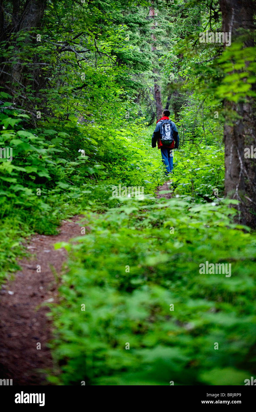 A young man walks along a trail in Glacier National Park, MT. - Stock Image