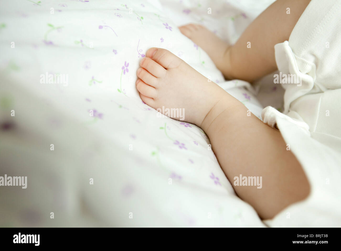 Infant's foot - Stock Image