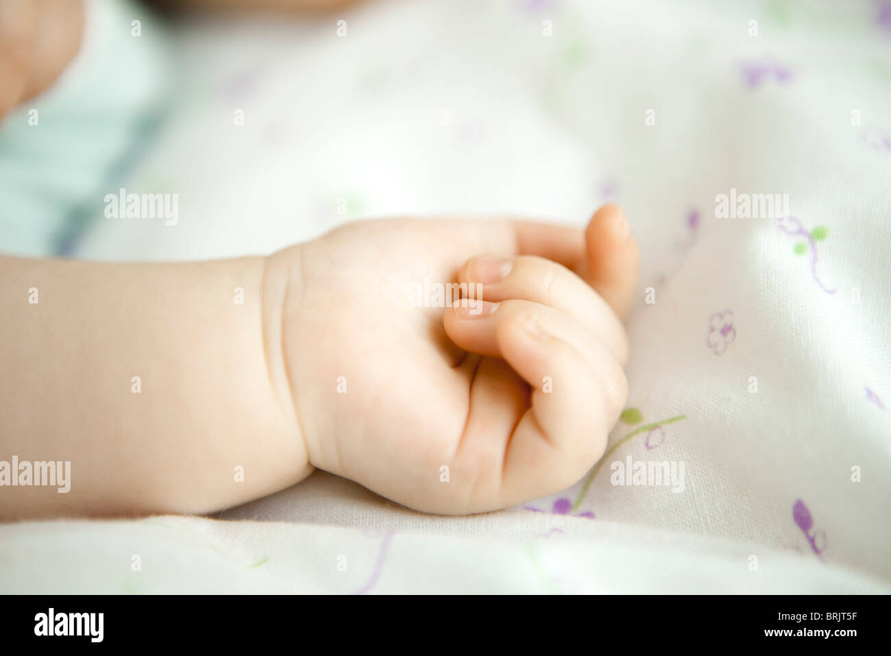 Infant's hand, close-up - Stock Image