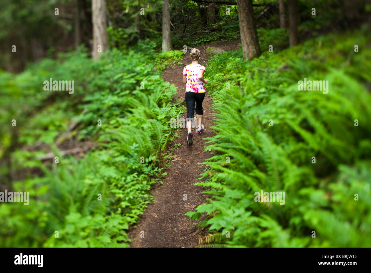 Young woman trail running through a field of lush green ferns. - Stock Image