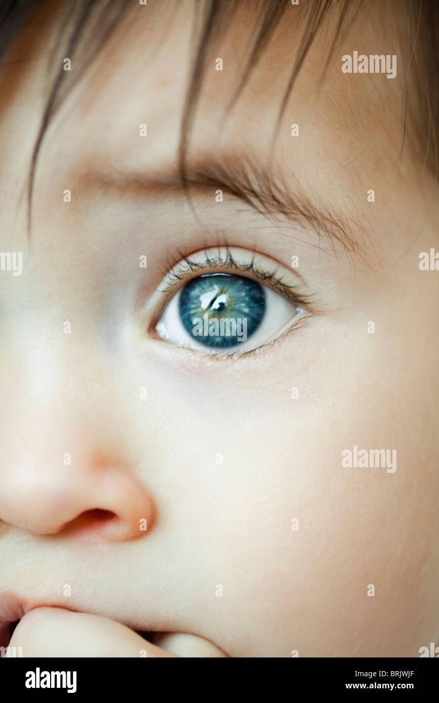 Infant's eye, close-up - Stock Image
