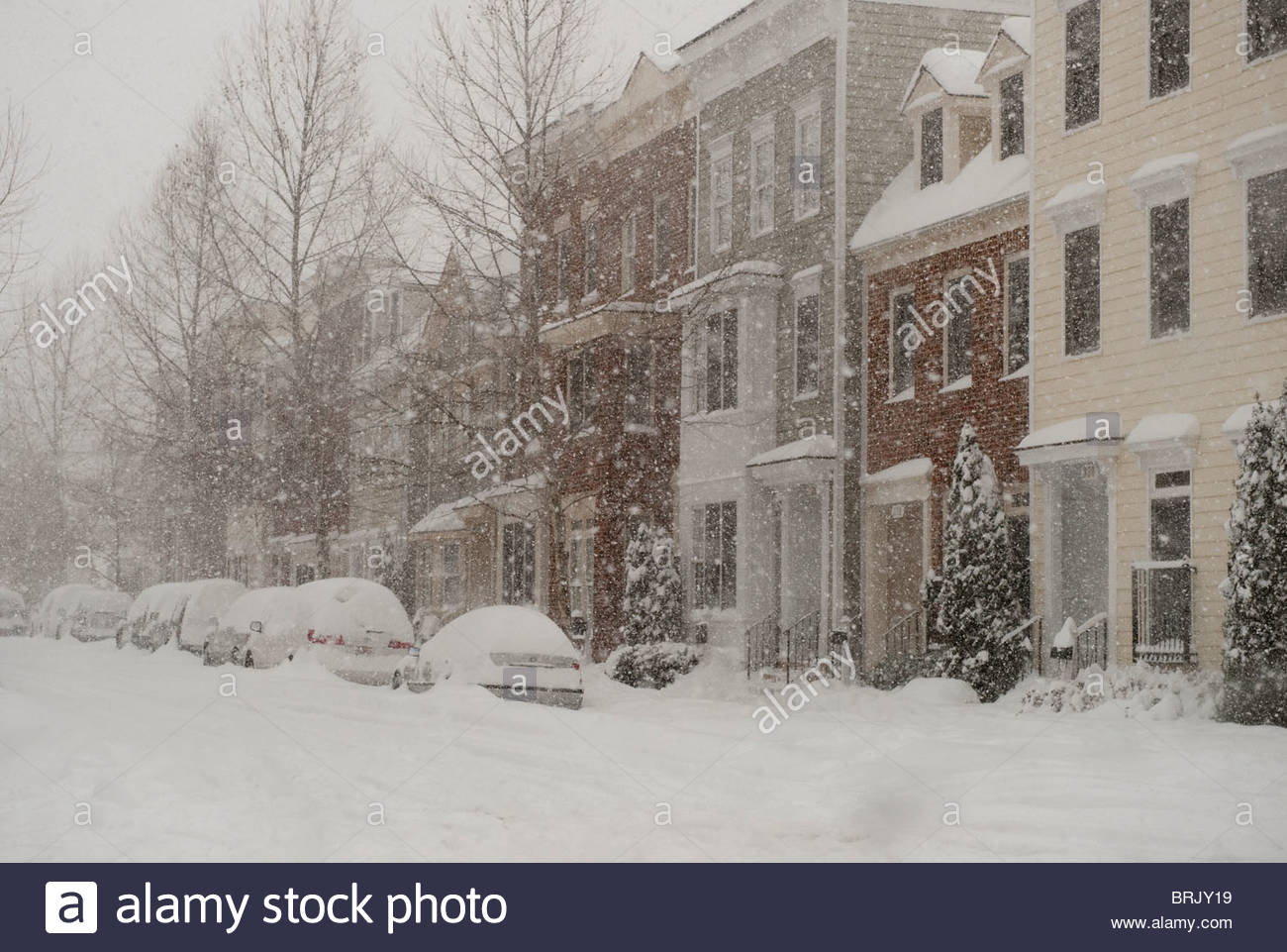 Blizzard of 2009 - 22 inches of snowfall - Stock Image