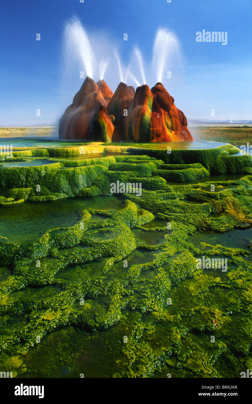 The continuous Fly Geyser  in the Black Rock Desert of Nevada, USA - Stock Image