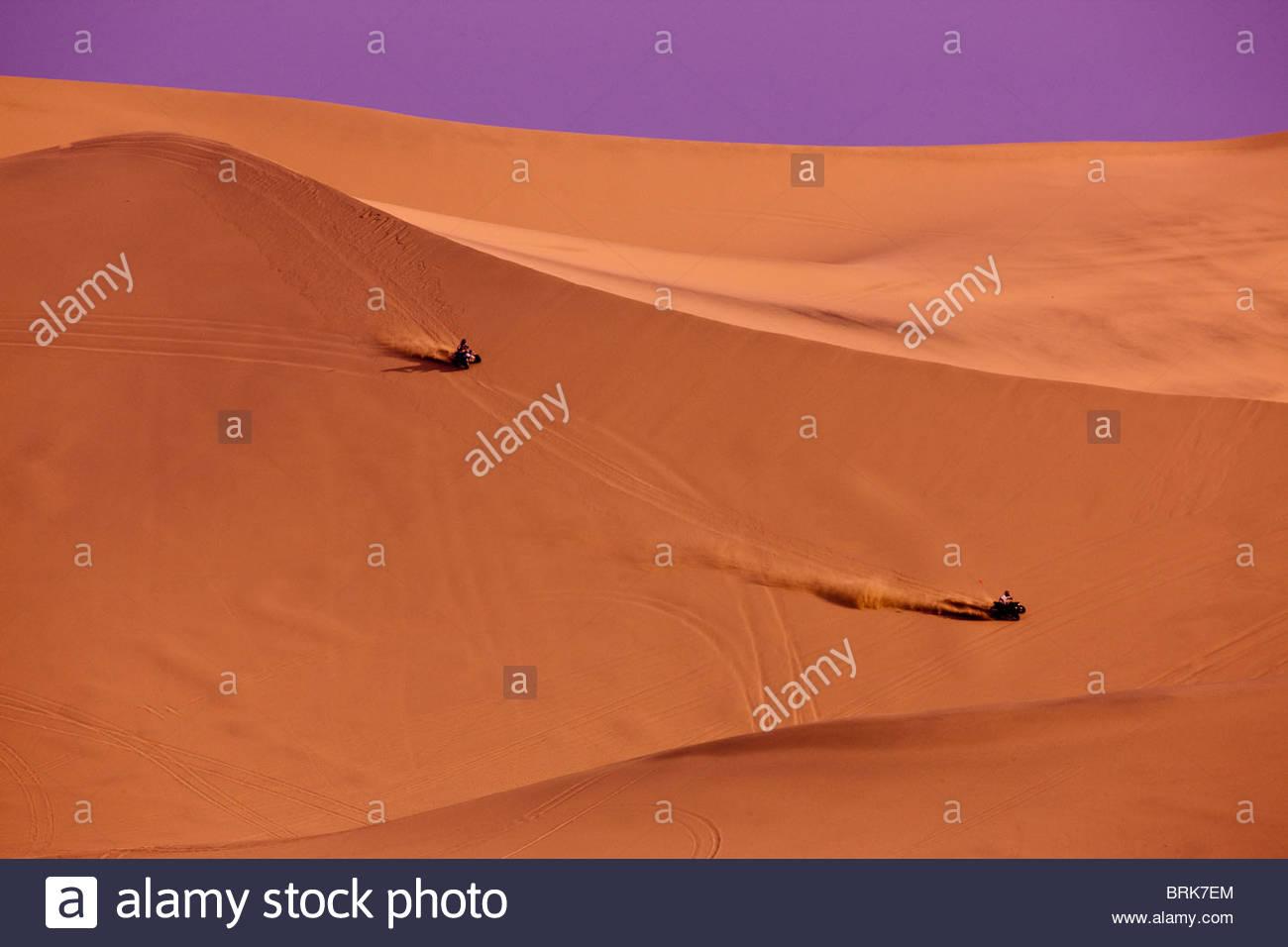 Friends riding quadbikes on desert dunes. - Stock Image