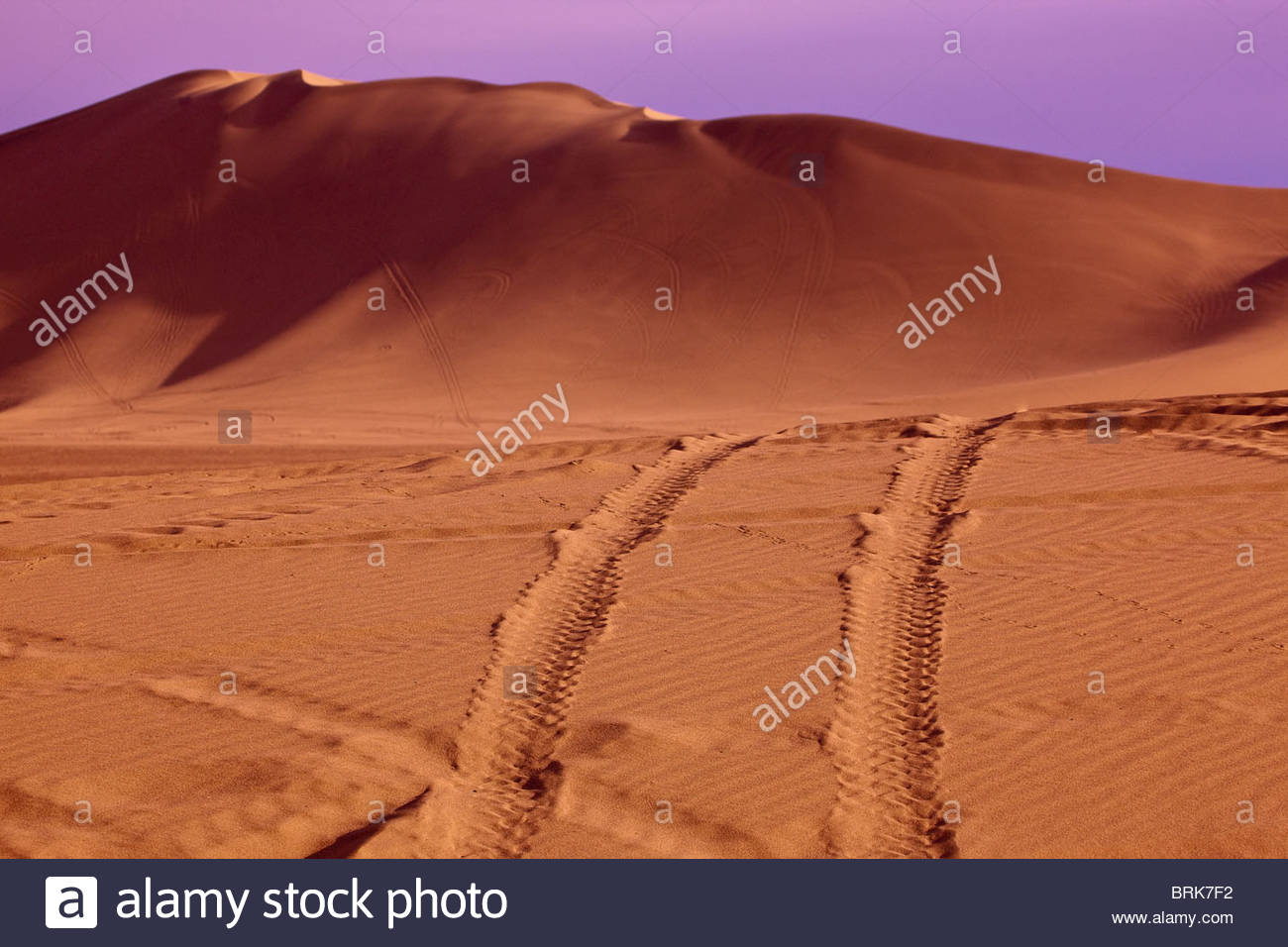 Tire tracks in a recreational area for off-road vehicle sports. - Stock Image