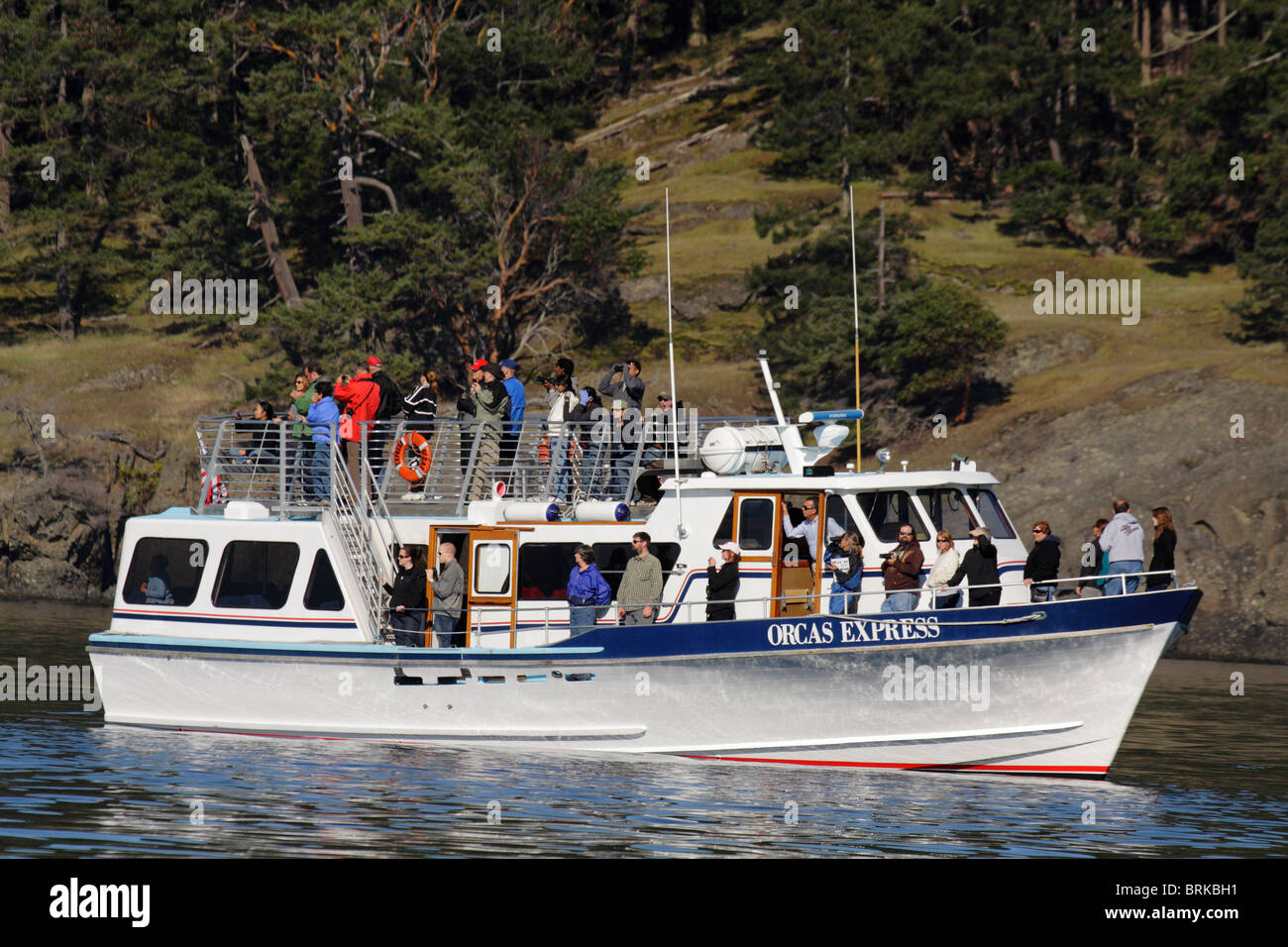 Whale watching tour boat looking for Orca whales in Juan de Fuca Strait-Victoria, British Columbia, Canada. - Stock Image