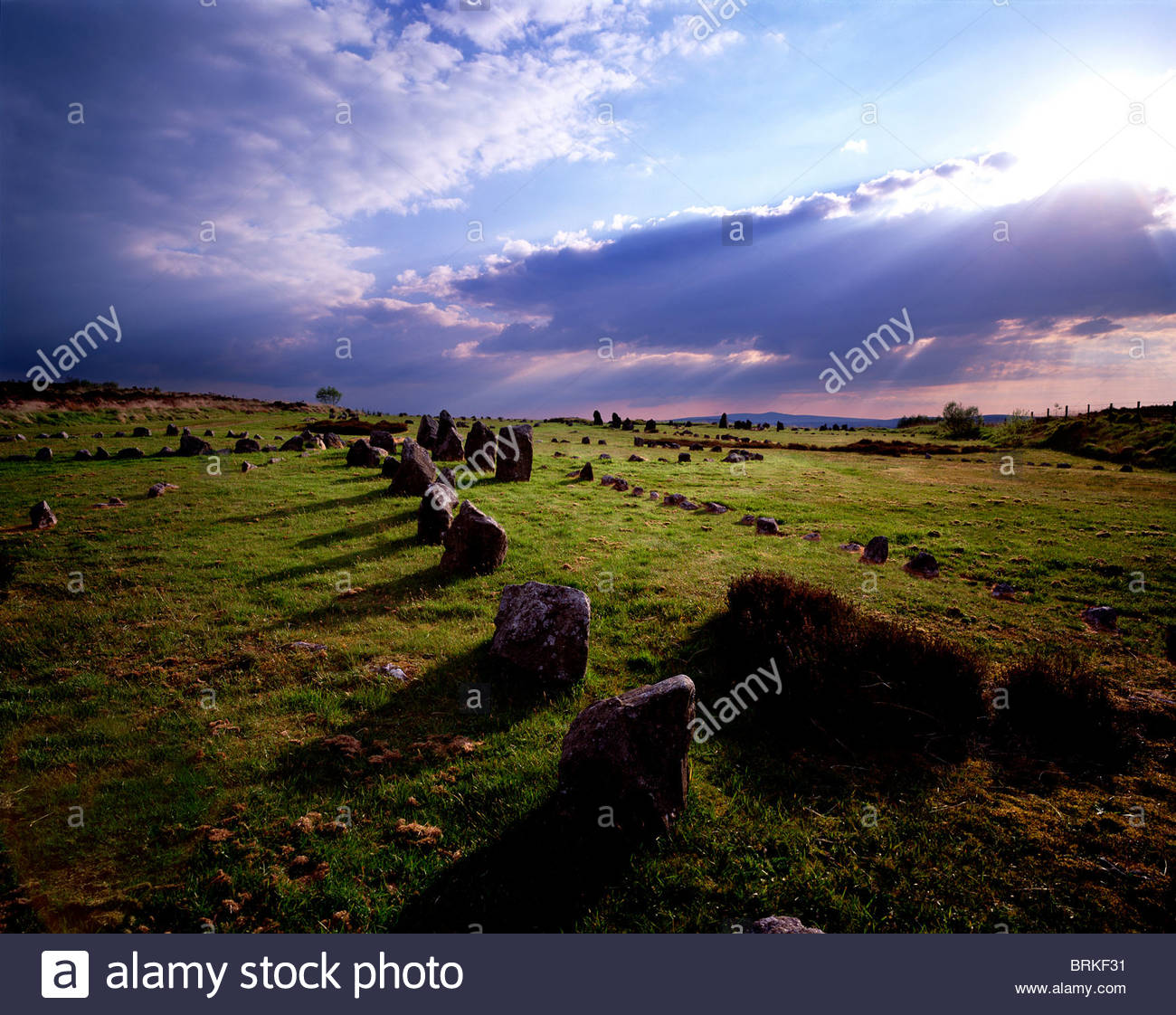 Beaghmore Bronze Age Stone Circles in County Tyrone - Stock Image