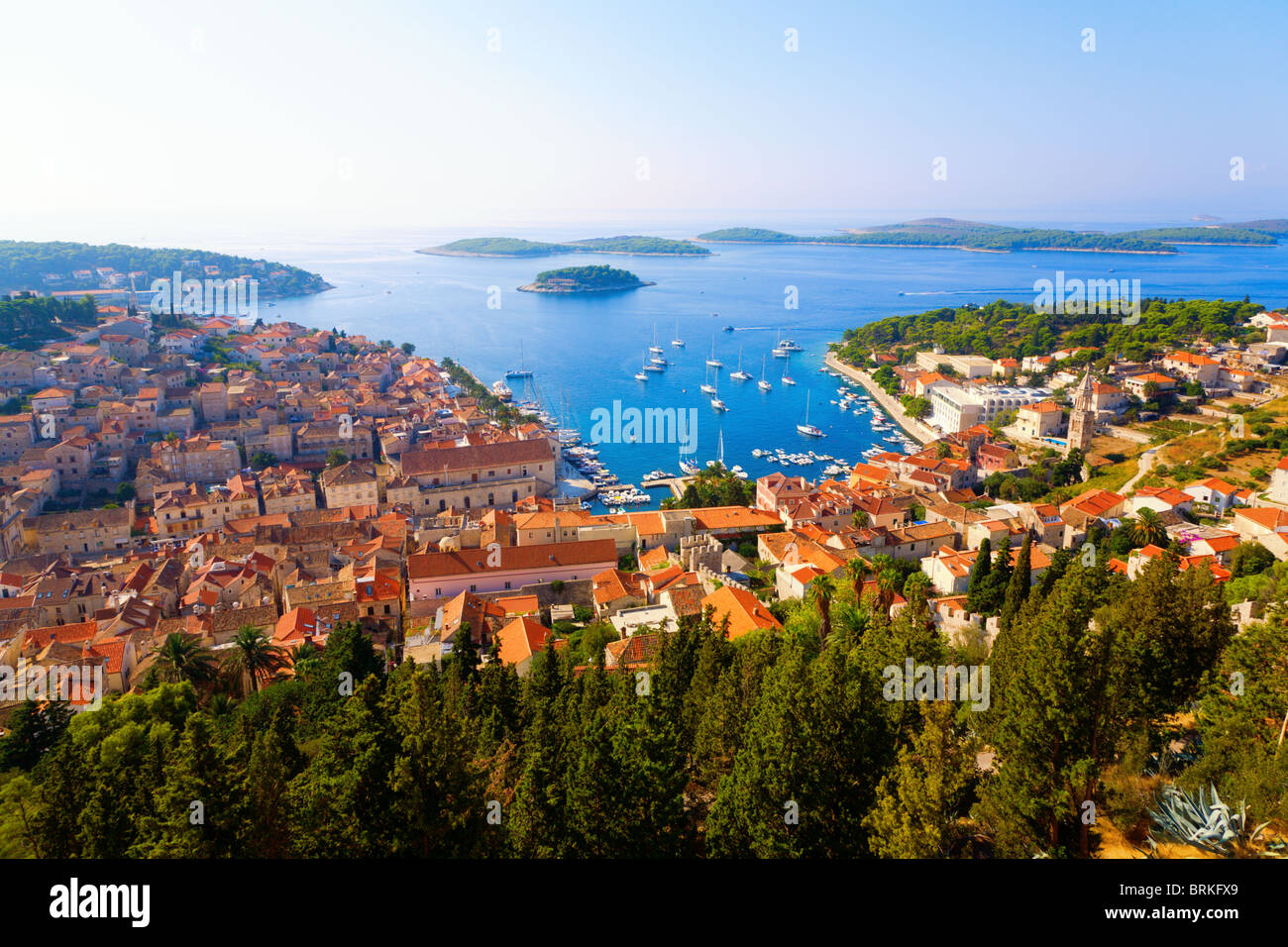 Dalmatian coast - Stock Image