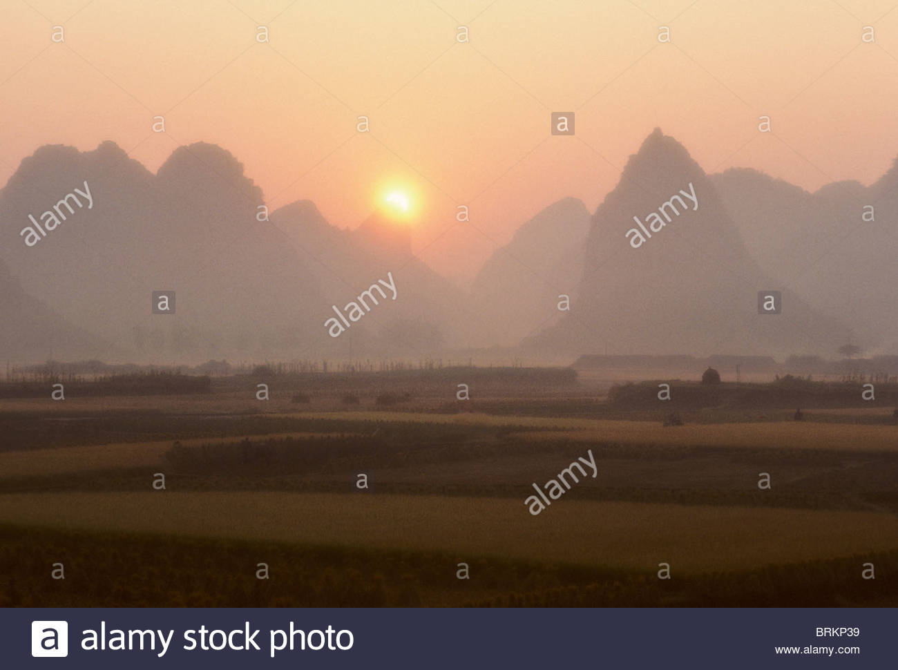 Sunrise, on ripe Rice fields in Guangxi province, southern china. Stock Photo