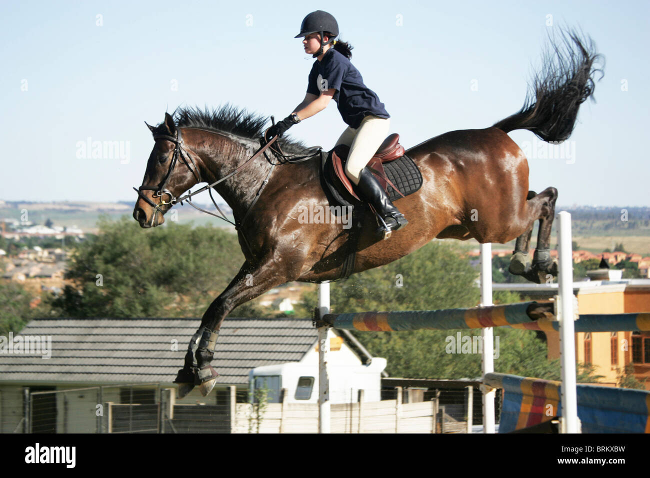 Horse with rider jumping over obstacle during practise routine - Stock Image