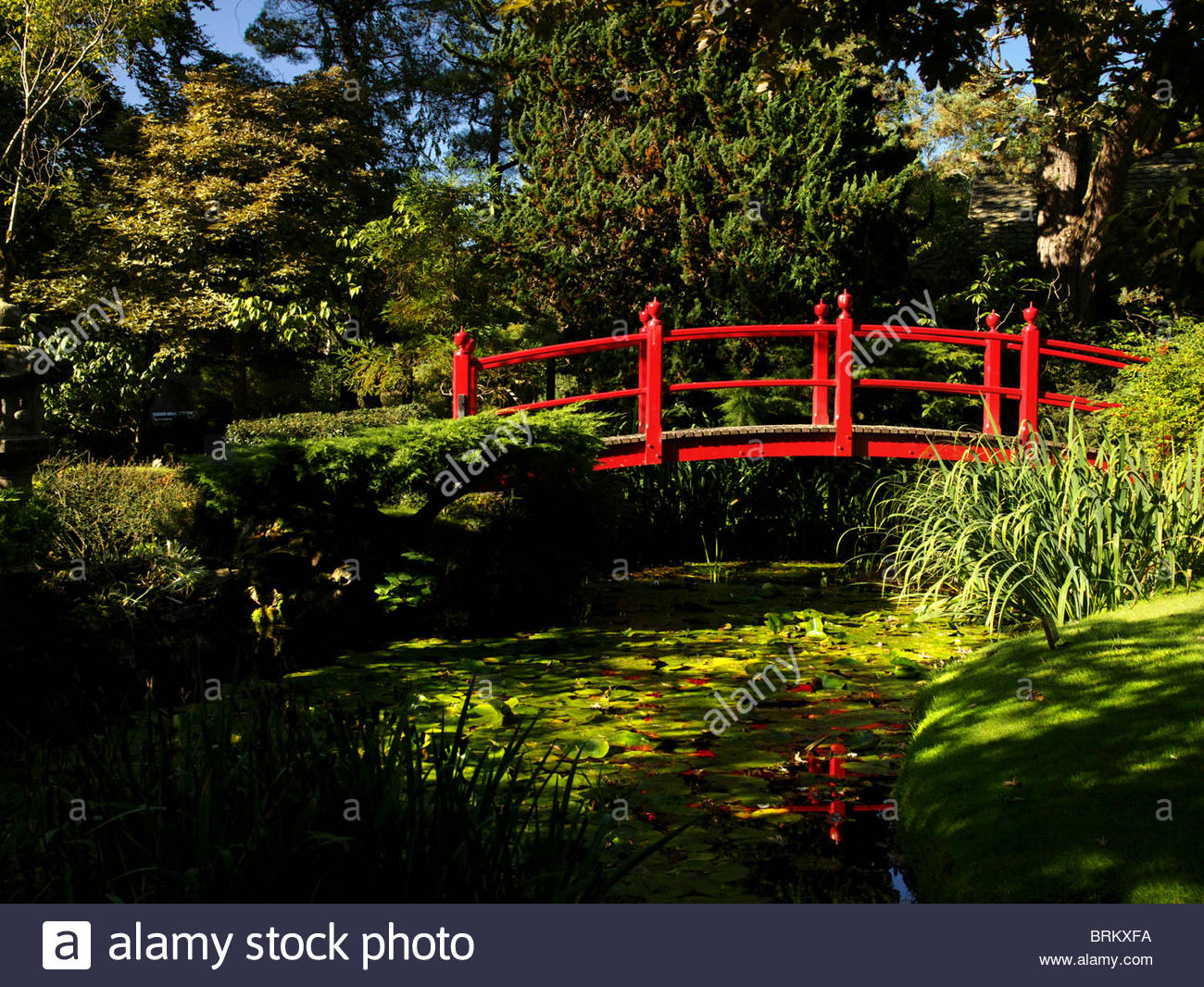 A red foot bridge within a Japanese themed garden in Ireland - Stock Image