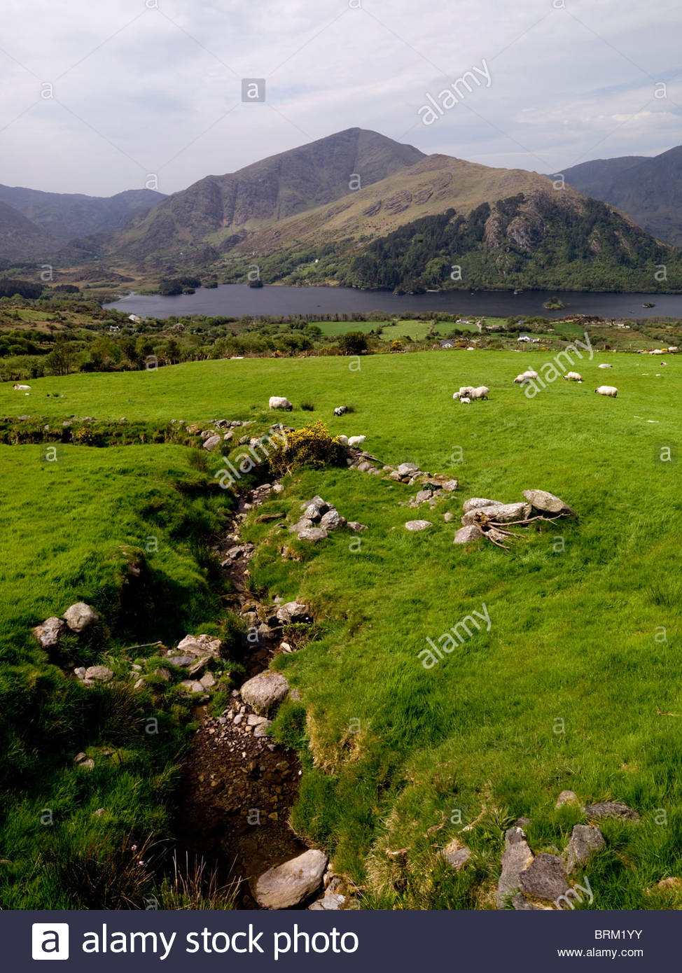 Glanmore Lake on the Healy Pass in the Beara Peninsula, County Kerry - Stock Image