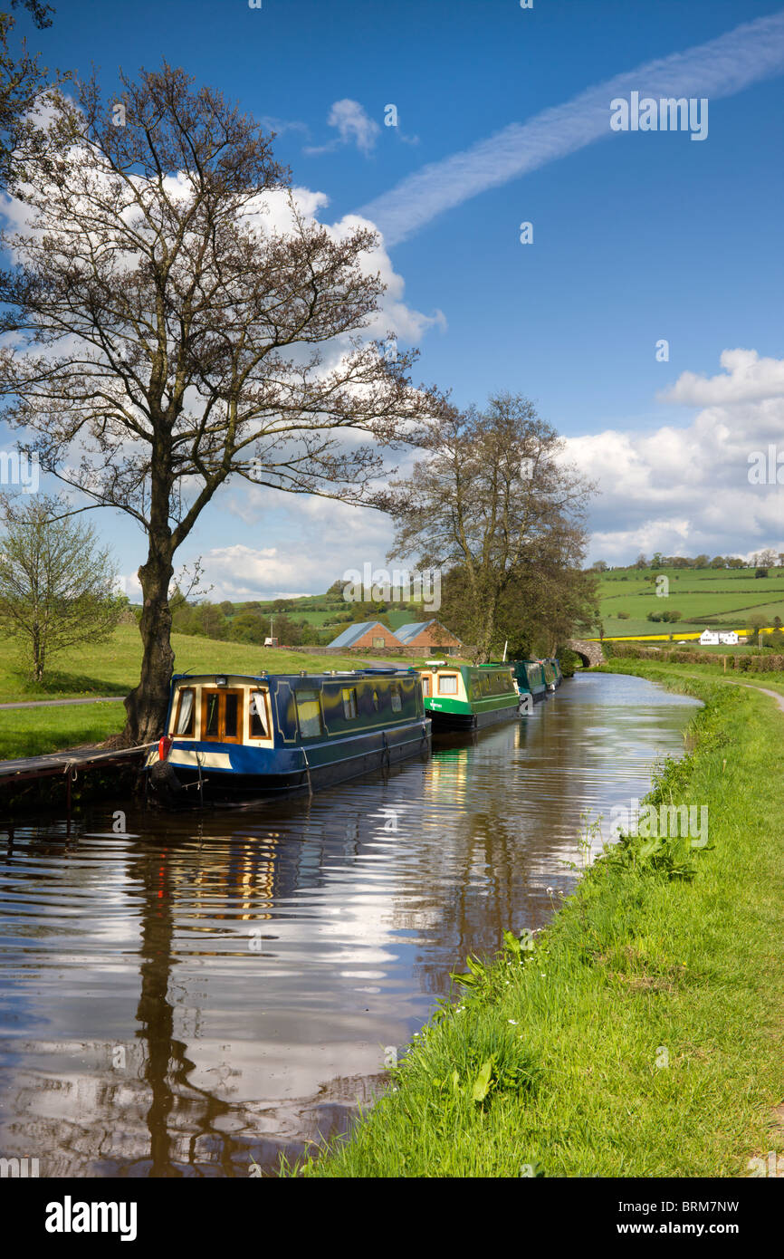 Narrowboats moored on the Monmouthshire and Brecon Canal near Pencelli, Brecon Beacons National Park, Powys, Wales. Stock Photo