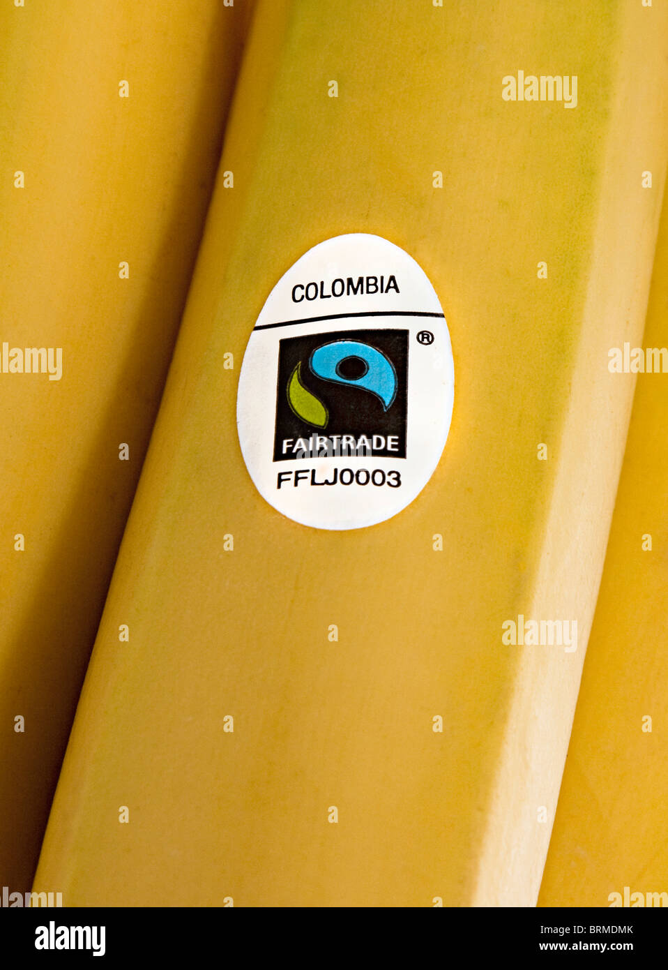 Banana with Fairtrade sticker and country of origin Colombia on sale in a UK supermarket - Stock Image
