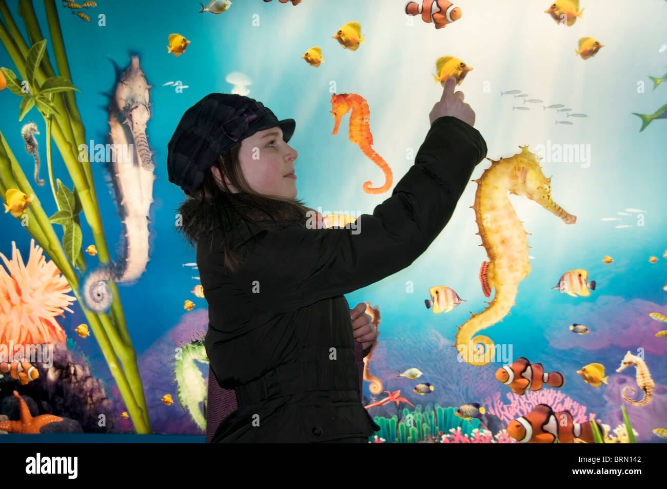 Polish tourist Young girl, 10-11 year old teenager profile, pointing to fish on display at London Aquarium, England, - Stock Image