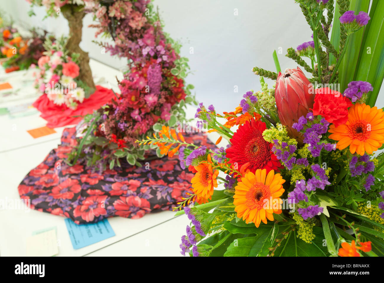 The floral competition in the produce tent at the Rusland Vale Horticultural society annual show. - Stock Image