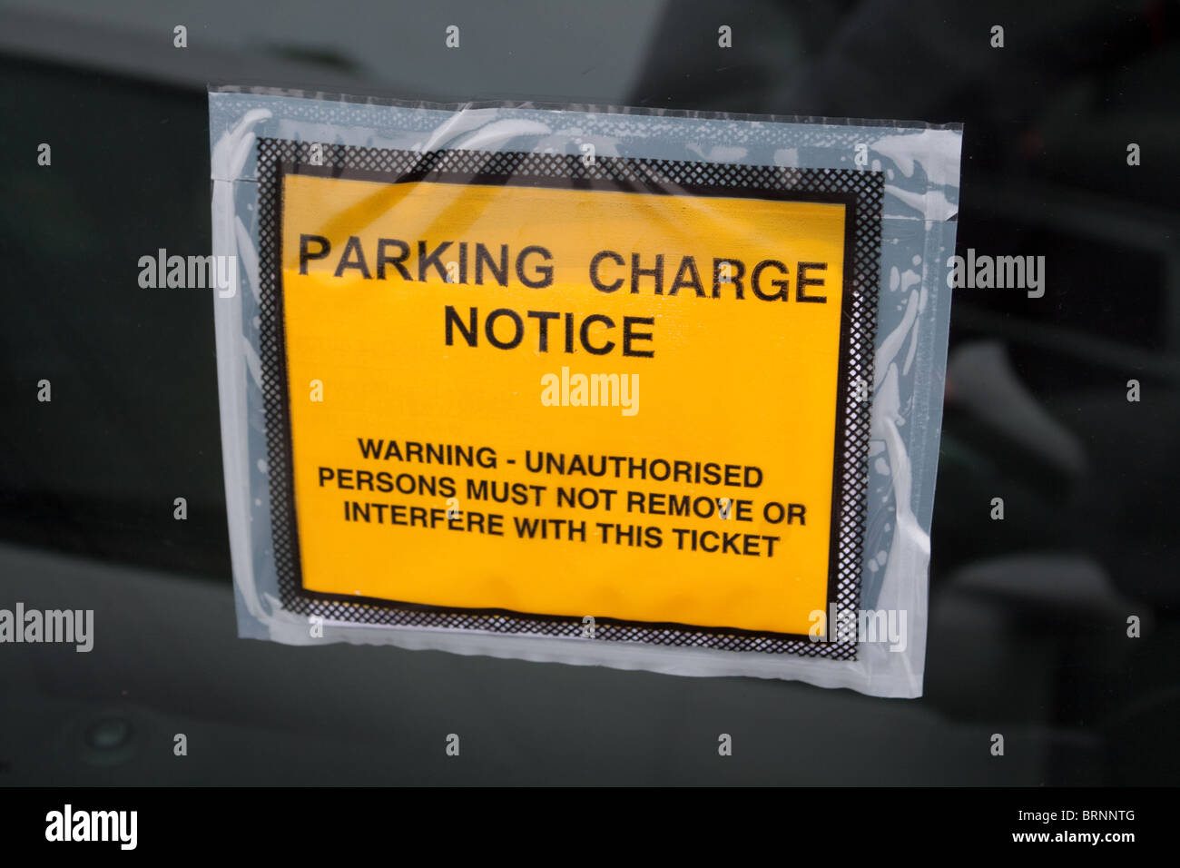 Parking Ticket - Stock Image