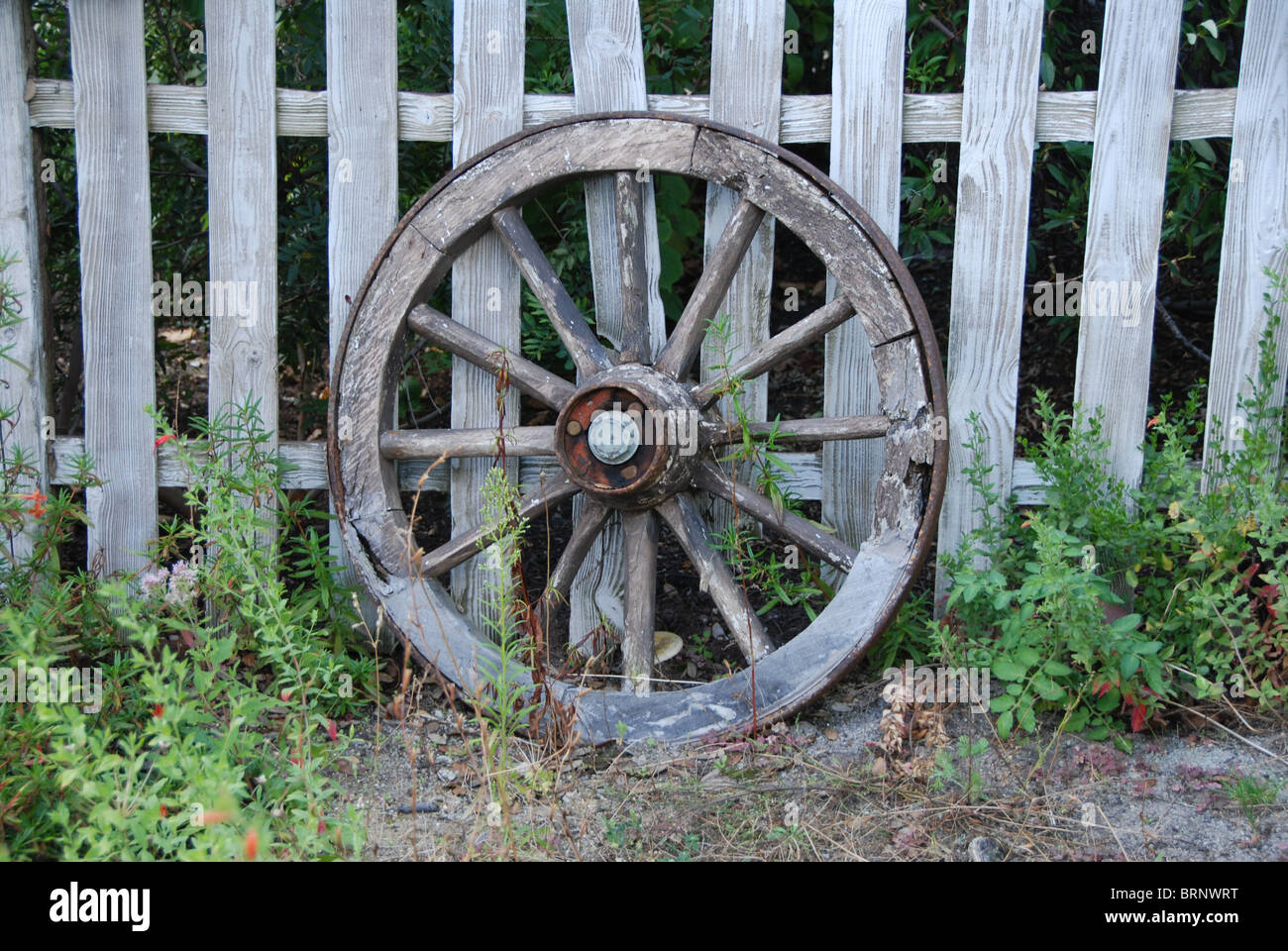An old Waggon Wheel retired , where are its 3 companions , the other wheels , long gone .. - Stock Image
