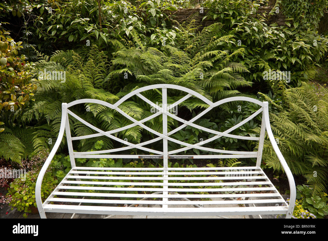 White Metal Ornate Garden Bench, Inviting With A Fern Background   Stock  Image