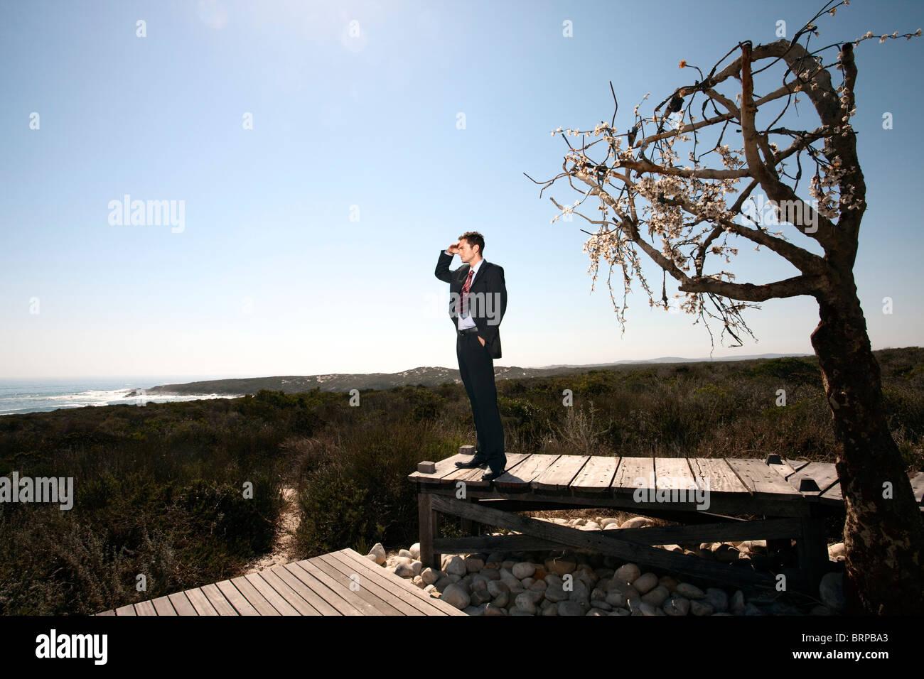 Business man in barren landscape - Stock Image