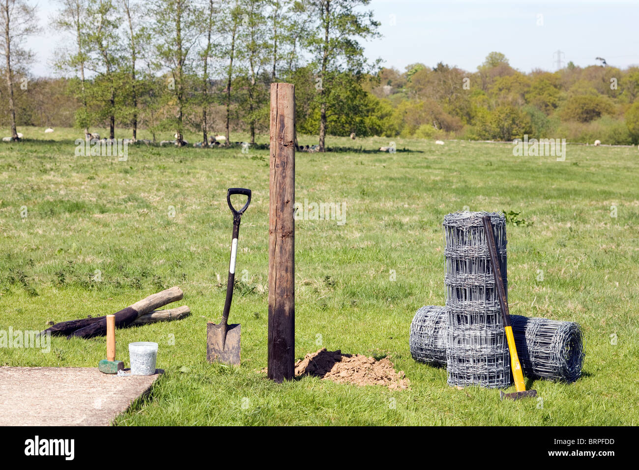 Sheep Fencing Stock Photos & Sheep Fencing Stock Images - Alamy