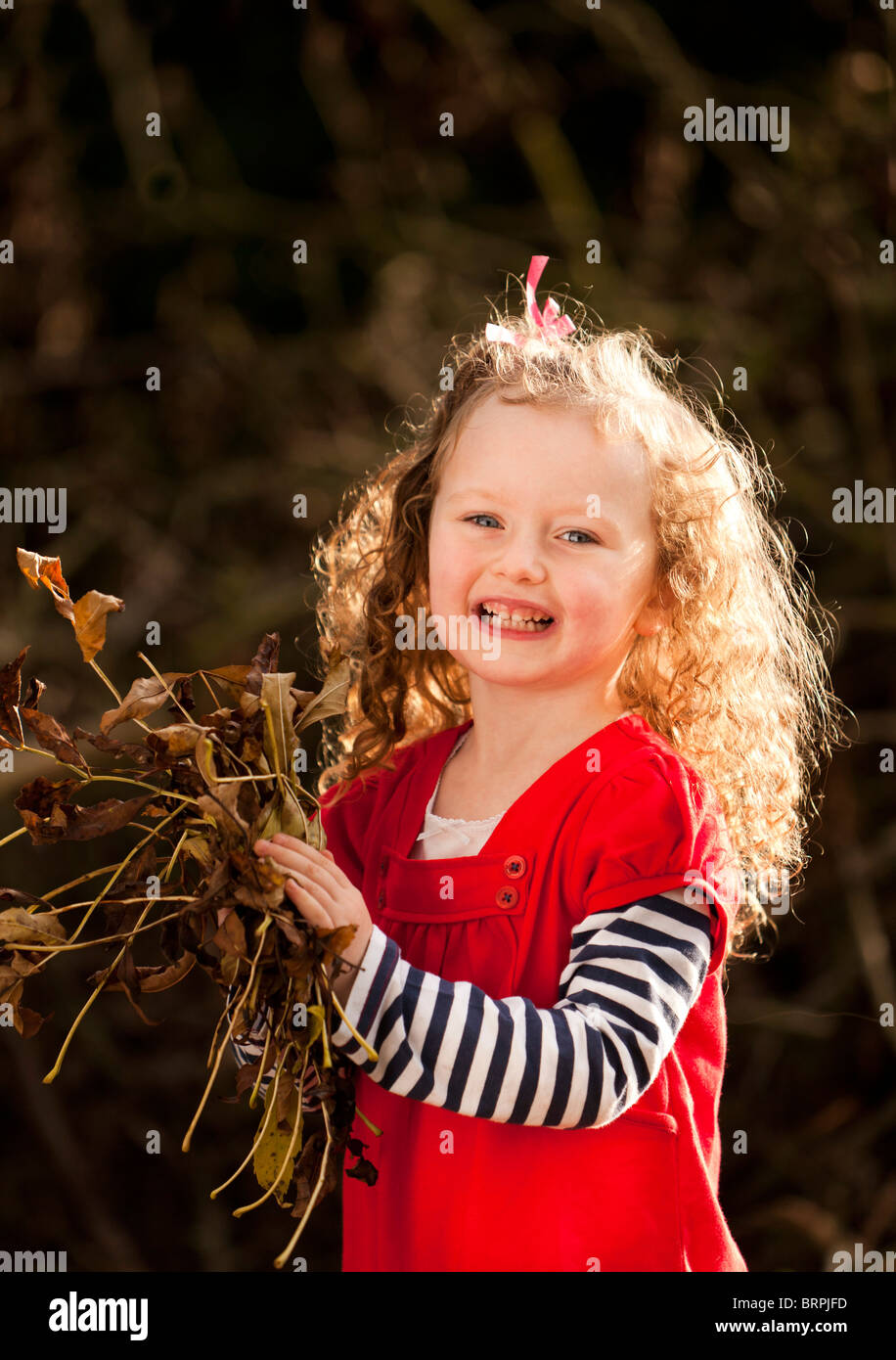 young girl playing with leaves in the autumn / fall season - Stock Image