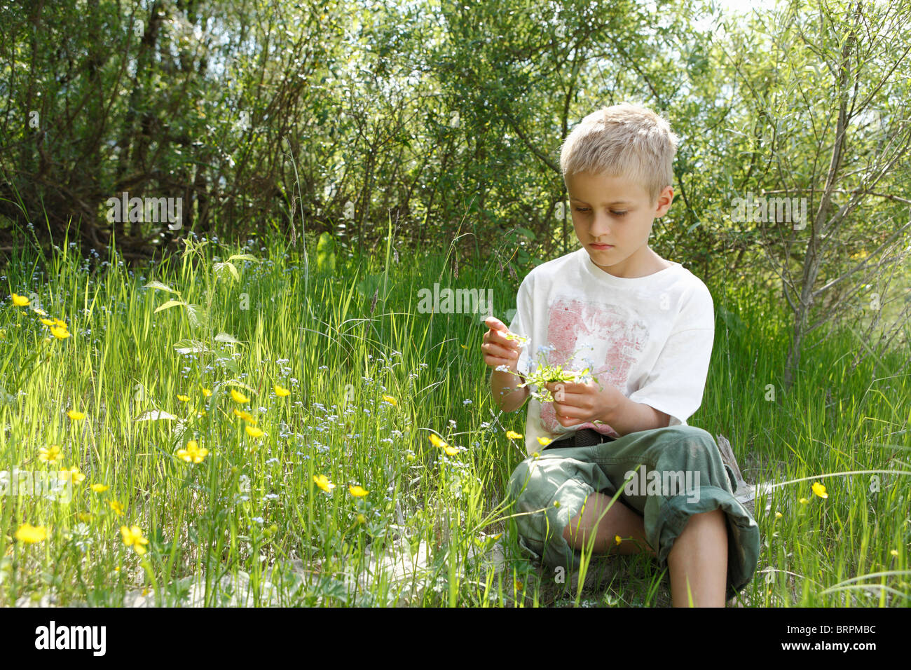 Free Time in the Nature - Stock Image
