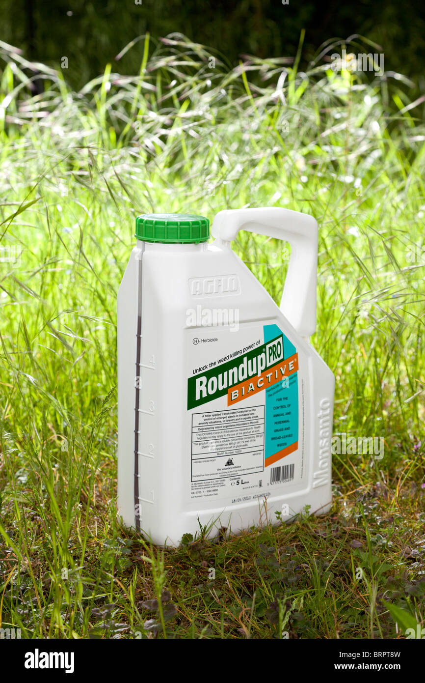 Roundup ProBiactive weedkiller made by Monsanto - Stock Image