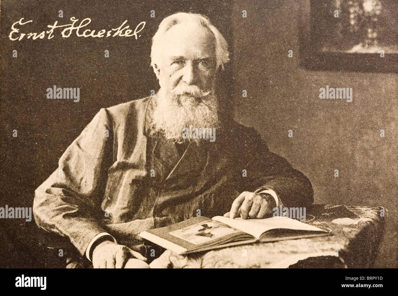 Ernst Heinrich Philipp August Haeckel (1834 – 1919), Evolutionary theorist. - Stock Image