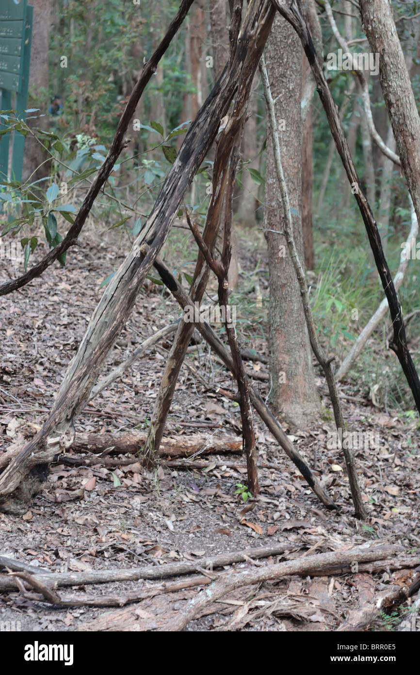 Dry Woods in the Bushland - Stock Image