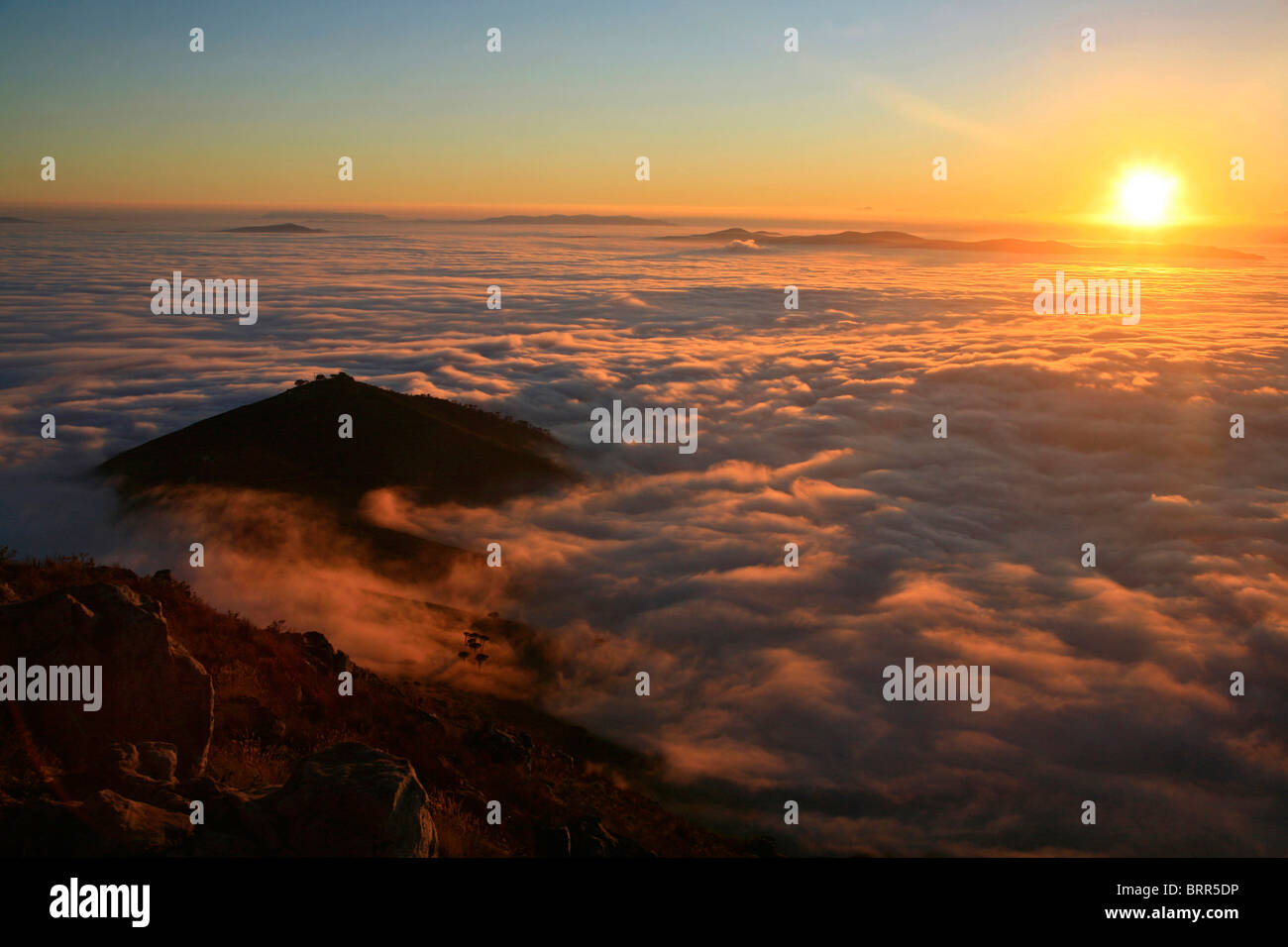 Sunrise from the top of Lions Head with clouds below covering the city - Stock Image
