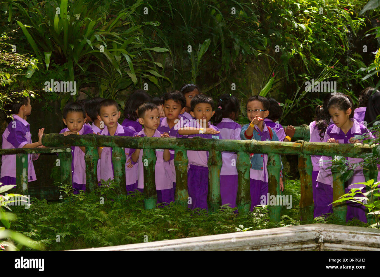 Malaysian schoolchildren in uniform on an outing to the Butterfly Park Kuala Lumpur. The children show a range of - Stock Image